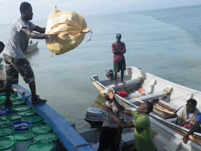 Handicap International emergency teams transporting humanitarian aid from Les Cayes harbour (south of the country) to Tiburon for people affected by Hurricane Matthew.