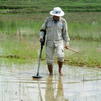 A deminer from Handicap International's team searching for cluster bombs in a rice field.