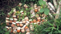 Blu-24 cluster munitions dropped on Laod in the 1960s and 70s