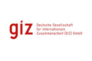 German Organisation for International Cooperation (GIZ)