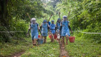 Completion of demining operations in DRC