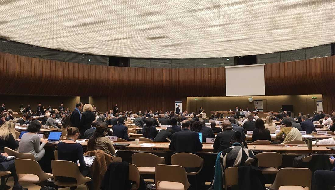 Conference of States Parties to the Ottawa Mine Ban Treaty - November 2018 in Geneva