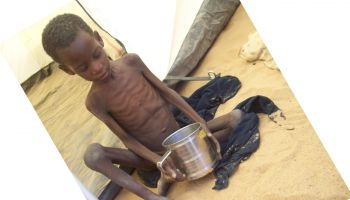 Helping malnourished children to flourish in the Sahel